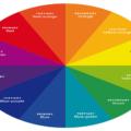 تست جالب : چه رنگی متعلق به شماست؟!