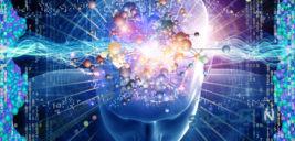 حافظه چگونه کار میکند؟