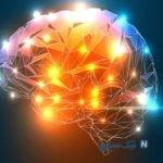 روش های فوق العاده برای تقویت حافظه