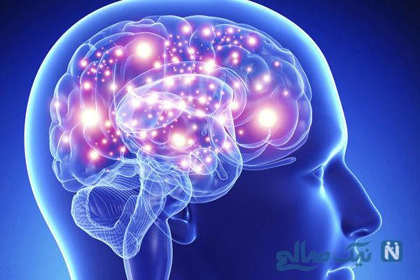 با این تست مغز خود را بشناسید!