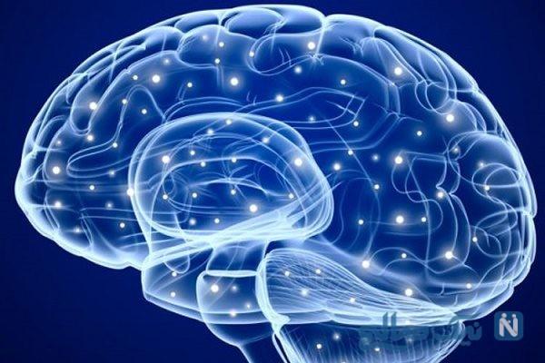 ۱۰ راهکار هوشمندانه برای تقویت حافظه