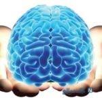 ارتقا تمرکز مغزی و حافظه به طور طبیعی
