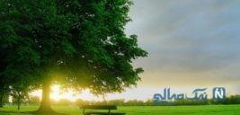 ۹روش طلایی برای رسیدن به آرامش در لحظات سخت