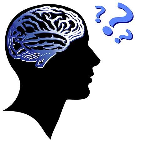 روانشناسی یادگیری و عملکرد امواج مغزی در فرایند یادگیری