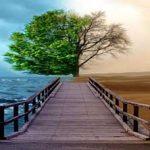 آداب زندگی و اشتباهات رایج زندگی تان را اصلاح کنید