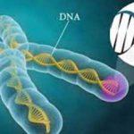 تاثیر افکار منفی بر DNA افراد