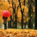 نکات بهداشتی برای کاهش افسردگی پاییزی