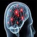 اثرات مخرب استرس بر مغز
