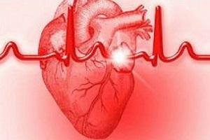 «سر و صدا» ریسک ابتلا به بیماری قلبی را افزایش می دهد