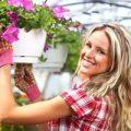 نحوه پاک کردن گرد و غبار گلهای آپارتمانی