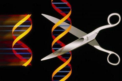 ویرایش ژنتیکی