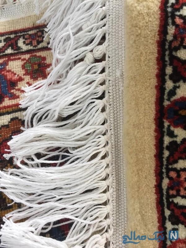 روش های ریشه زنی فرش