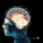آیا هیپنوتیزم واقعیت دارد؟ فیلم از سگی که هیپنوتیزم می کند