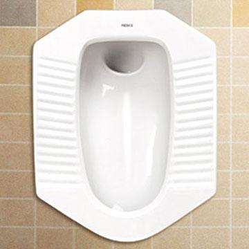 توالت فرنگی را لطفا استفاده نکنید؛ توالت ایرانی بهترین درمان مشکلات گوارشی!