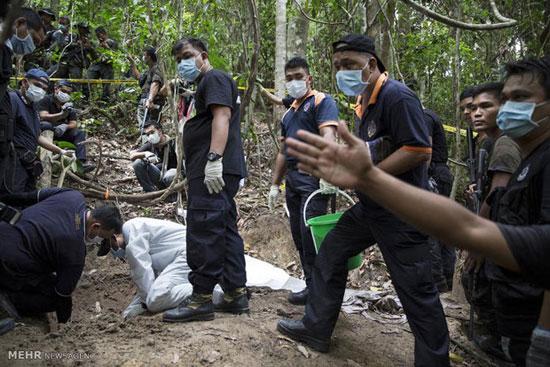 اجساد افراد مجهول الهویه در جنگل + تصاویر