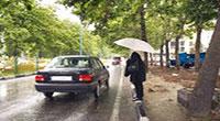 مشکلات و آسیب های اجتماعی منطقه ۷ تهران