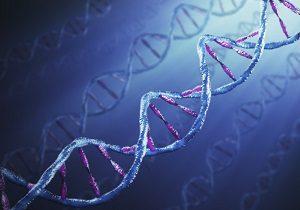 تعداد فرزندانتان را پیشبینی کنید , فالگیرهایی از جنس بستههای ژنتیکی