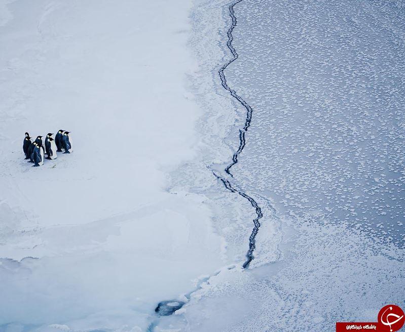 تغییرات آب و هوایی در جهان