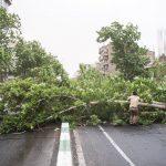 اسامی مصدومان توفان شدید عصر دیروز در تهران