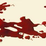 نقشه خونین مادر زن برای قتل داماد