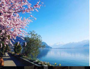 سفر آزاده نامداری به سوئیس