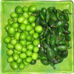 هشدار برای خرید چاقاله بادام و گوجه سبز
