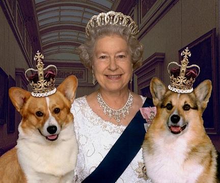 ماجرای عکسی از ترور ملکه انگلیس که تصادفا به شهرت رسید