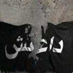 موبایل مورد علاقه گروهک تروریستی داعش!