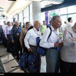 واکنش رئیس سازمان حج به خبر کشتهشدن حجاج