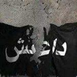 خوشحالی مشهدی ها بعد از نابودی داعش
