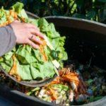 تبدیل پسماند غذا به کود در ۲۴ ساعت