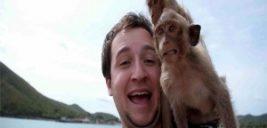 اینستاگرام سلفی با حیوانات را پنهان میکند
