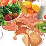 کمبود این ویتامینها حافظهتان را ضعیف میکند