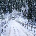 اولین برف زمستانی در کرمان