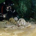 بزرگترین گورستان آبی که در خلیج مکزیک کشف شد
