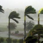 هشدار هواشناسی در خصوص وزش باد شدید در تهران