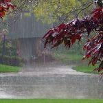 پیش بینی ورود سامانه بارشی جدید به کشور از سهشنبه ۲۱ فروردین