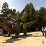 تصاویری جالب و دیدنی از بزرگترین اژدهای جهان