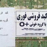 ماجرای فروش کبد ۵۰۰ میلیون تومانی در کشورمان ایران