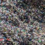 تصاویری از جمع آوری زباله توسط یک میلیونر