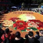 تصاویری دیدنی از استقبال چینی ها از فصل پاییز