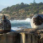 تصاویری جذاب و دیدنی از نمایشگاه آثار هنری در کنار دریا