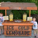 ماجرای دو کودک که با فروش لیموناد خانهدار شدند