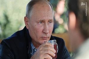 پوتین رئیس جمهور روسیه در باغ سیب