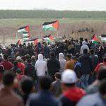 تصاویری از جای خالی شهید فلسطینی در کلاس درس