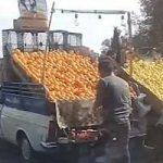 تصویری از یک میوه فروش با معرفت