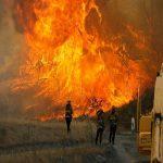 آتش سوزی گسترده در ایالت کالیفرنیا آمریکا