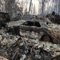 تصاویری از ایالت کالیفرنیا یک هفته بعد از آتش سوزی
