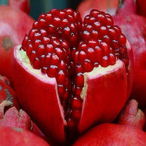 قیمت هر دانه انار در ژاپن ۵۰ هزار تومان