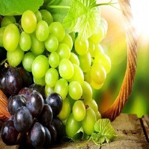 پرورش انگور با طعم پشمک
